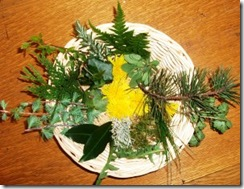 Botanicals2_298x230